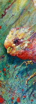 Intersellar bird