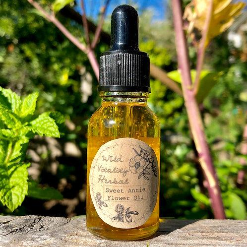 Sweet Annie flower oil