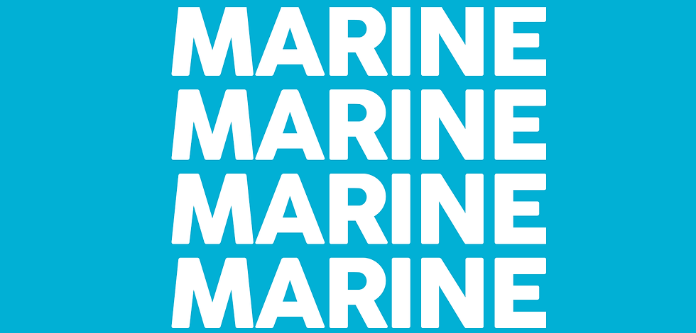 Marine bande.png