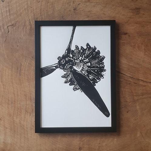 Mistral Major | blanc | 21 x 29,7 cm