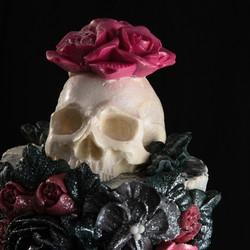 Cascading Skeleton Rose close up
