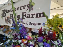 Blackberry Bog Farms