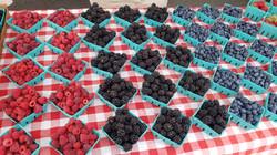 A & B Berries