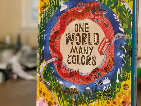 Children's Book Review: One World Many Colors