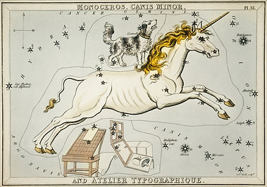 Monoceros and Canis Minor Gemini Cancer