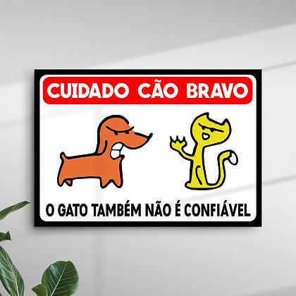 Cuidado Cão Bravo o Gato também não é Confiável