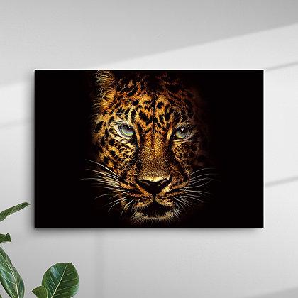 Animais (Tigre)