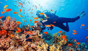 Top 5 spots for Scuba Diving in India