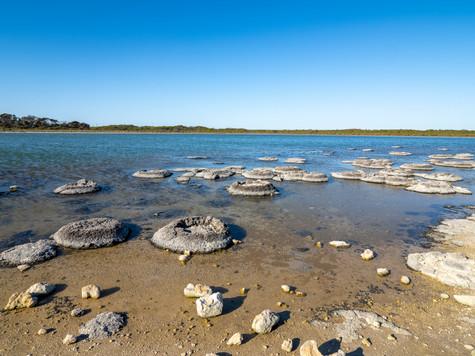 Kwongan salt lake
