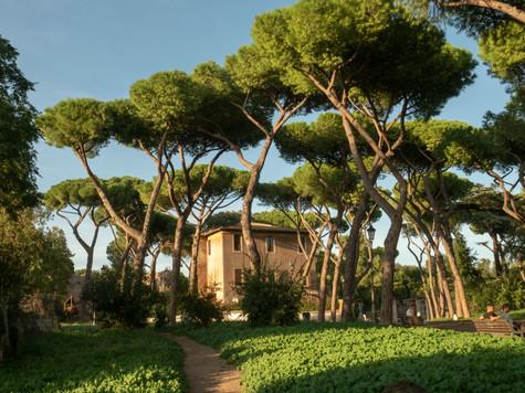 Rome-9130896-HDR.jpg