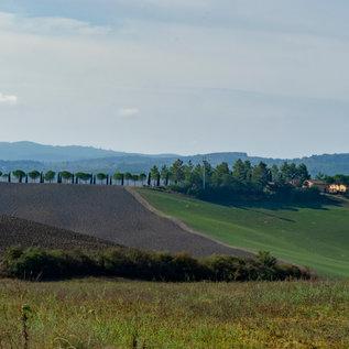 Tuscany autumn landscape