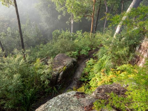 Seven Little Australians Park, Killara