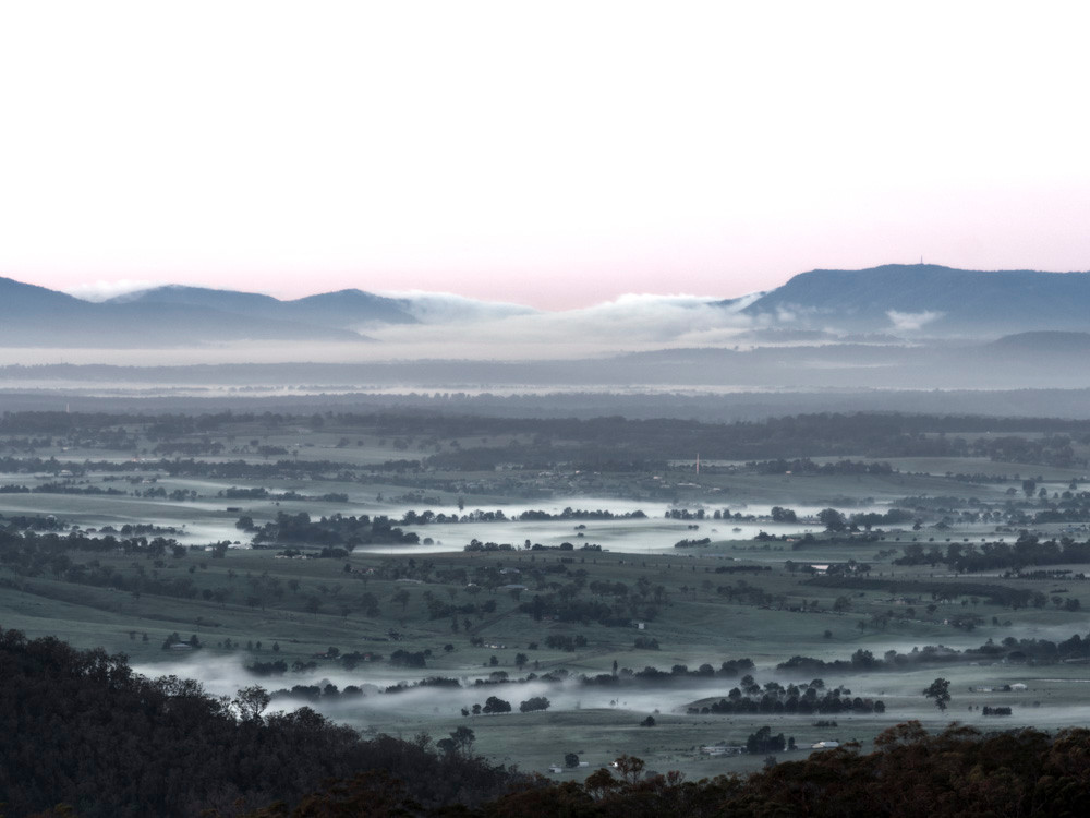 Misty morning Hunter Valley