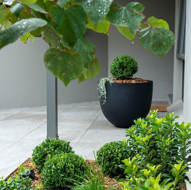 Elegant garden-3140394.jpg