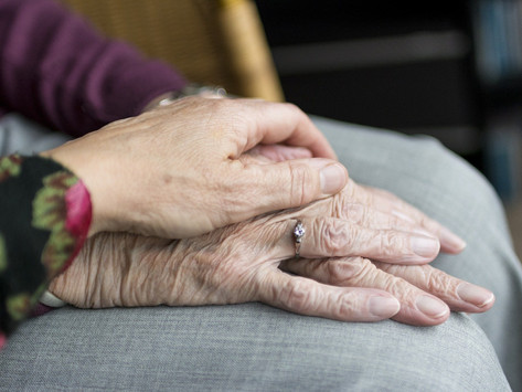 5 things to look for in a care home - meet KLOE!