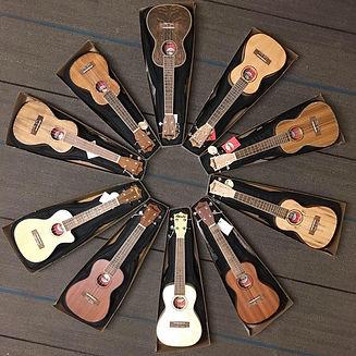 ukulele accessories.jpg