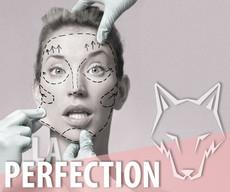 **LA PERFECTION **👌