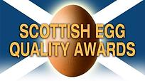 Egg Awards.png