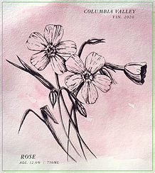 Rose20-Front.jpg