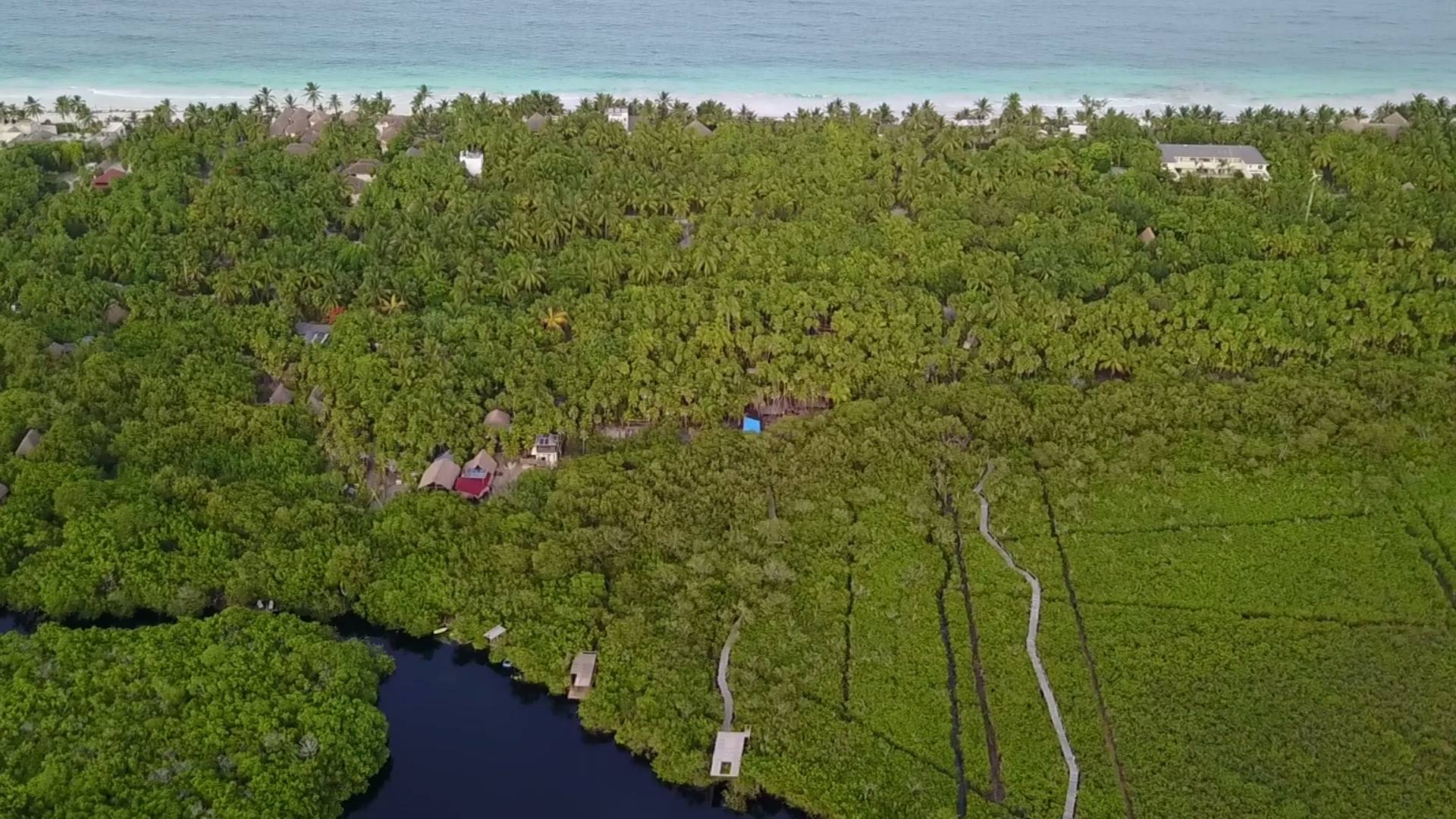Cenote Encantado Tulum from above and beachfront view. 25/07/2017