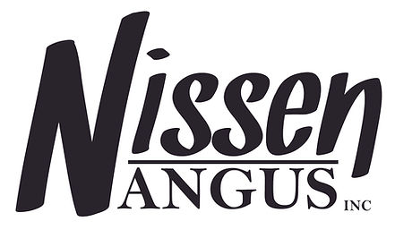 Nissen Angus.jpg
