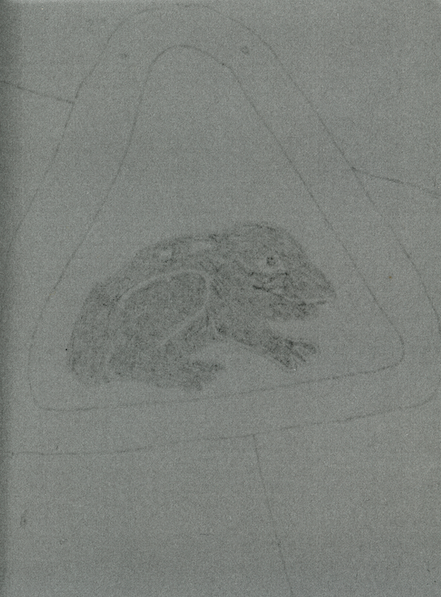 Study of The Frog Sign