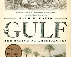 The Biography of a Place: Jack Davis' The Gulf