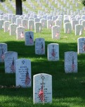 Books to Honor Memorial Day