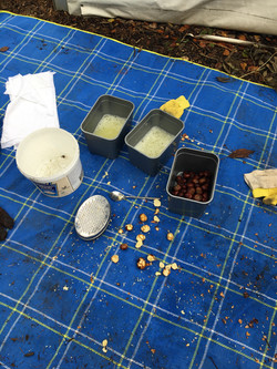 Forest School Network Events