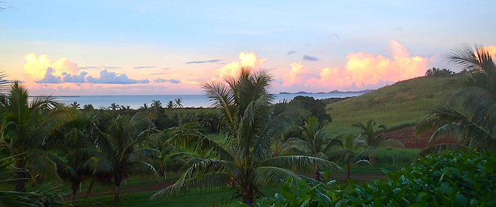 Palmlea Farms, Vanua Levu, farm sunrise