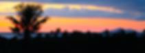 Palmlea Farms restaurant sunset