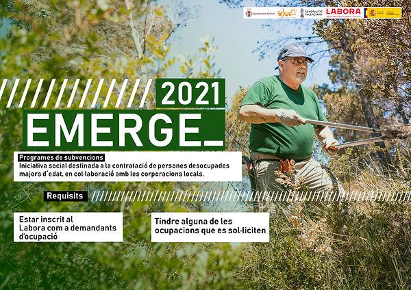 IDEA_EMERGE 2021 copia.jpg