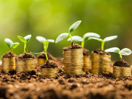 Entreprise durable : Comment rendre votre entreprise plus respectueuse de l'environnement