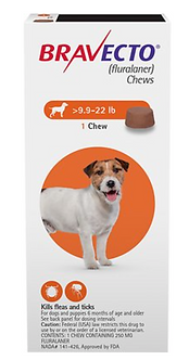 Bravecto Chew for Dogs (9.9 - 22 lbs)