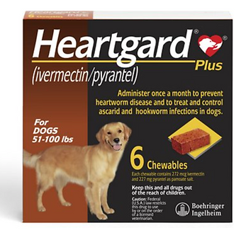 Heartgard Plus Chew for Dogs (51-100 lbs)