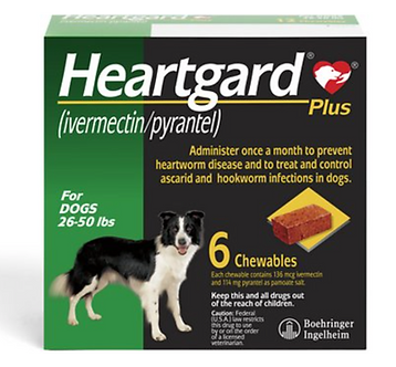 Heartgard Plus Chew for Dogs (26-50 lbs)