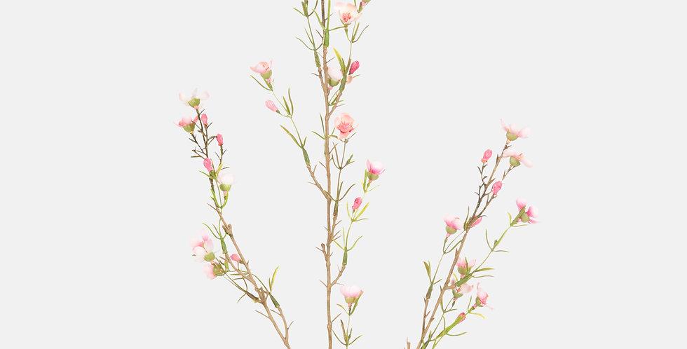 Wax Flower Spray