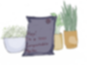 Packaging (with added plants).png