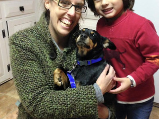 """Adopted!  """"Daisy"""""""