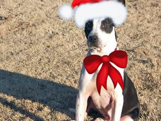 Waitin' for Santa