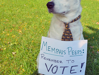 Today's the Day, Memphis!
