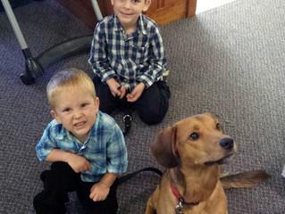 "Adopted!  ""Baxter"""