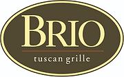 brio-logo-2.png