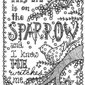 Eye_on_the_Sparrow.jpg