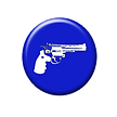Concealed Carry Permit Button