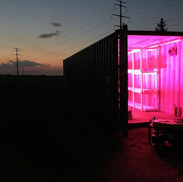 First test of our electrical system!! #urbanfarming #vegetables #solar #solarenergy #sustainability