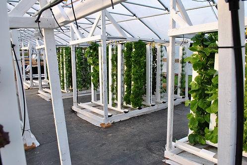 Vertical Garden Tubes