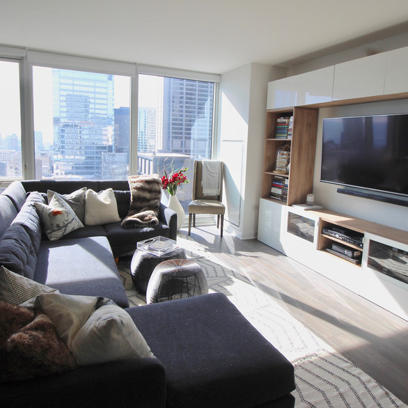 Apartment in the Loop, Chicago IL