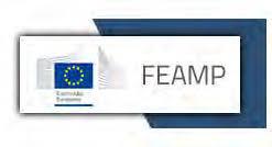PO FEAMP Marche – Misura 1.42: bando per la concessione di contributi in favore di pescatori