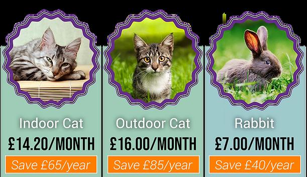 cat rabbit health plan pricing.png